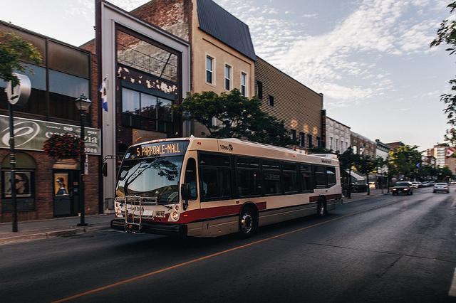 Downtown Belleville. Photo Adam Tilley.