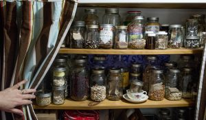 Seed Sanctuary operated by Mohawks of the Bay of Quinte