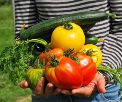 A person holding a handful of vegetables from the garden.