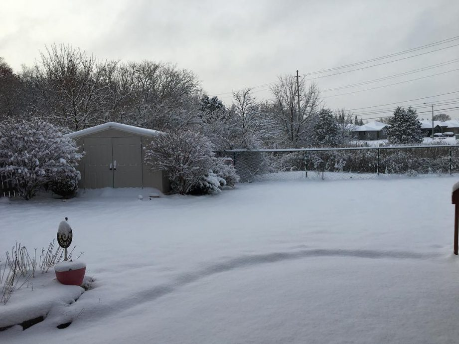 A backyard covered with snow.