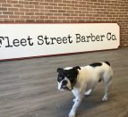 A dog in front of a sign that says, Fleet Street Barber Co. Peter Fletcher, owner of Fleet Street Barber Co in downtown Trenton, shares what it's been like adapting to the challenges of the pandemic.