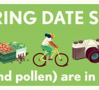 A green rectangle with a beige border. White text: 6 SPRING DATE SPOTS. love (and pollen are in the air). Illustrated images through the centre: wine, fruit baskets, cyclist, camera, flower.