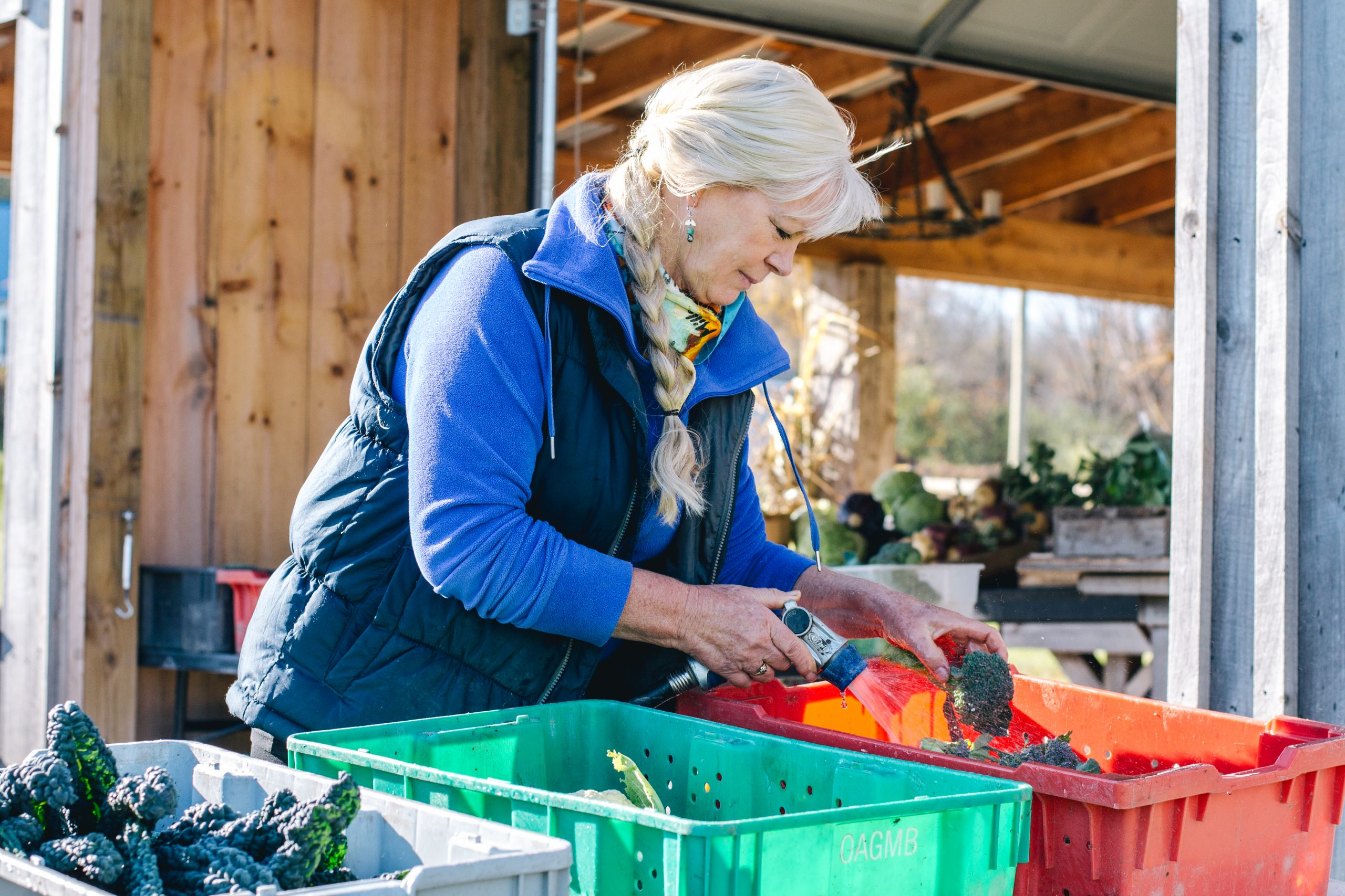 Sue Vanden Bosch of Willow Creek Farms stands at a table outside the farm stand washing produce.
