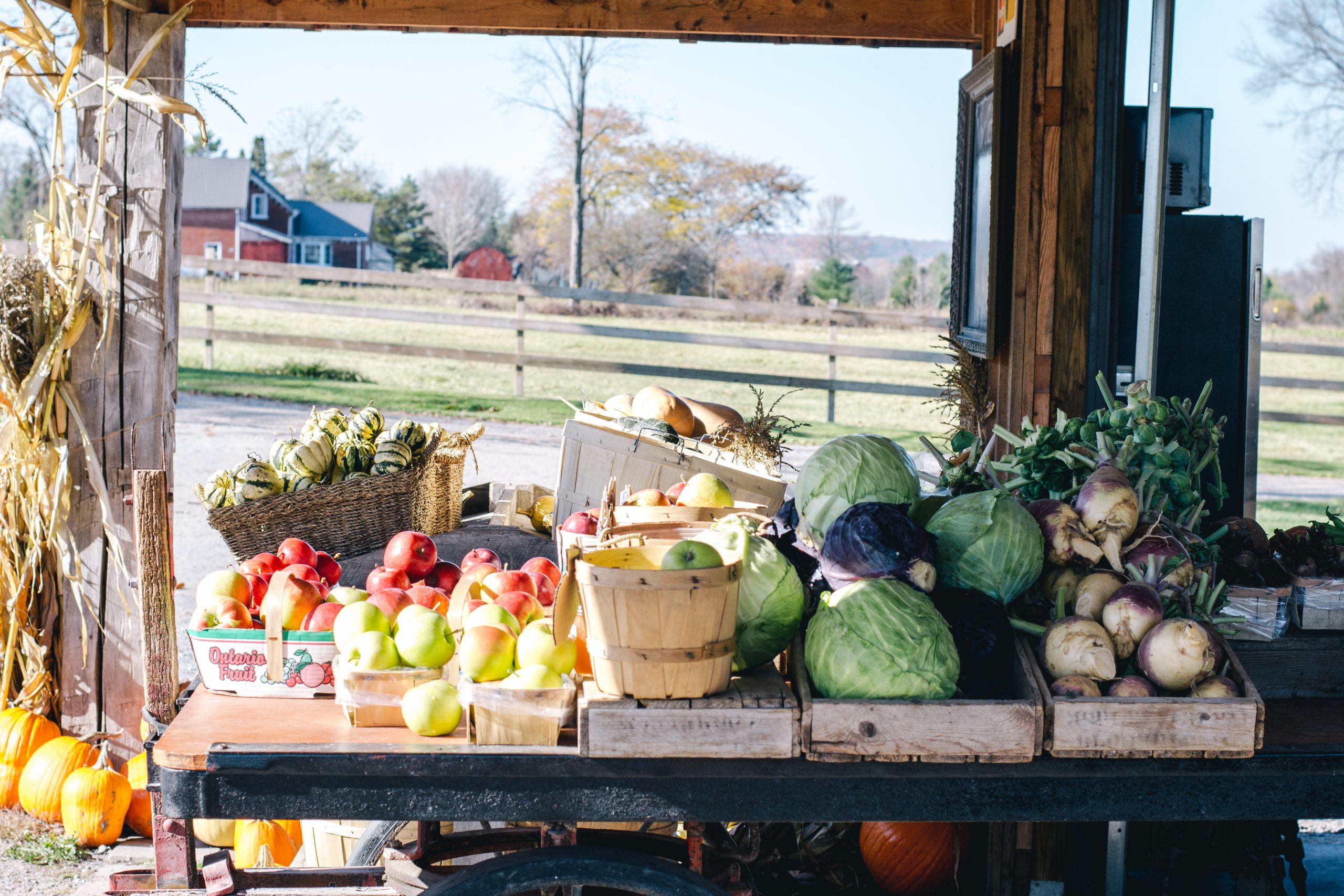 Piles of local, fresh produce at the Willow Creek Farms farm stand.