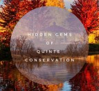 Quinte Conservation hidden gems Mark Hopper photo