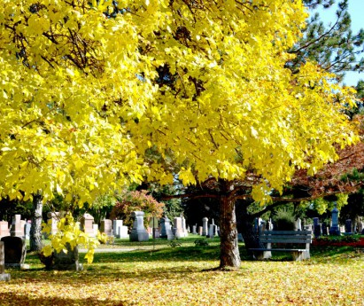 A view of Fall at the Belleville Cemetery 1 Bay of Quinte