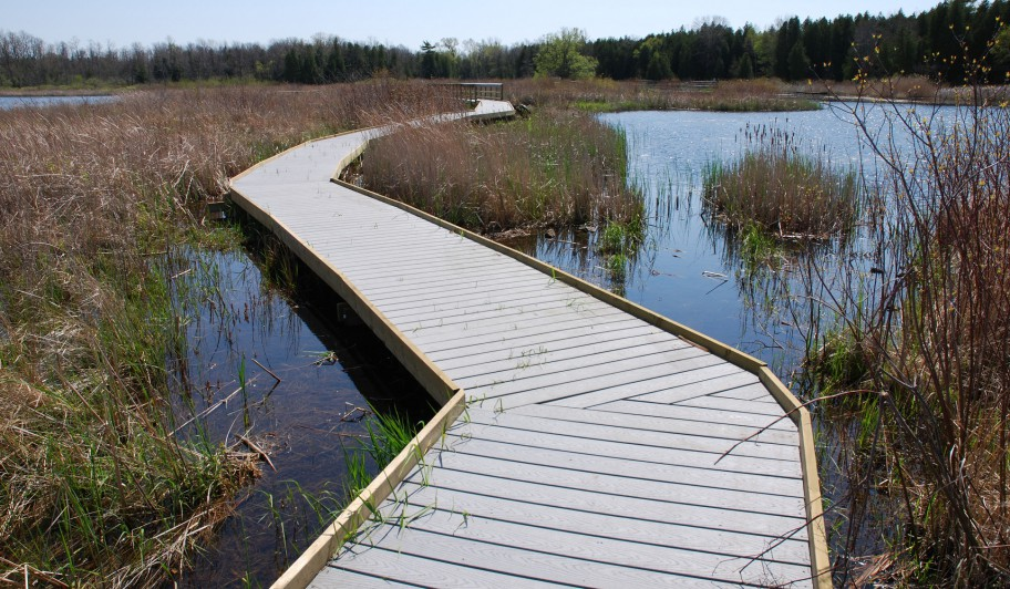 Marsh_Boardwalk1_Pete-Alker
