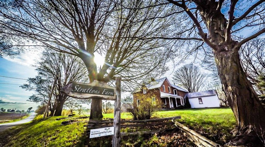 Strattons Farm