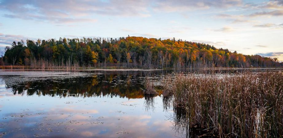 Justin Anderson's Tips for Hiking in the Bay of Quinte Region
