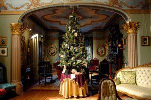 A christmas tree inside Glanmore house.