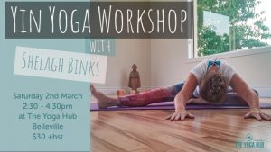 Yin Yoga The Yoga Hub Belleville