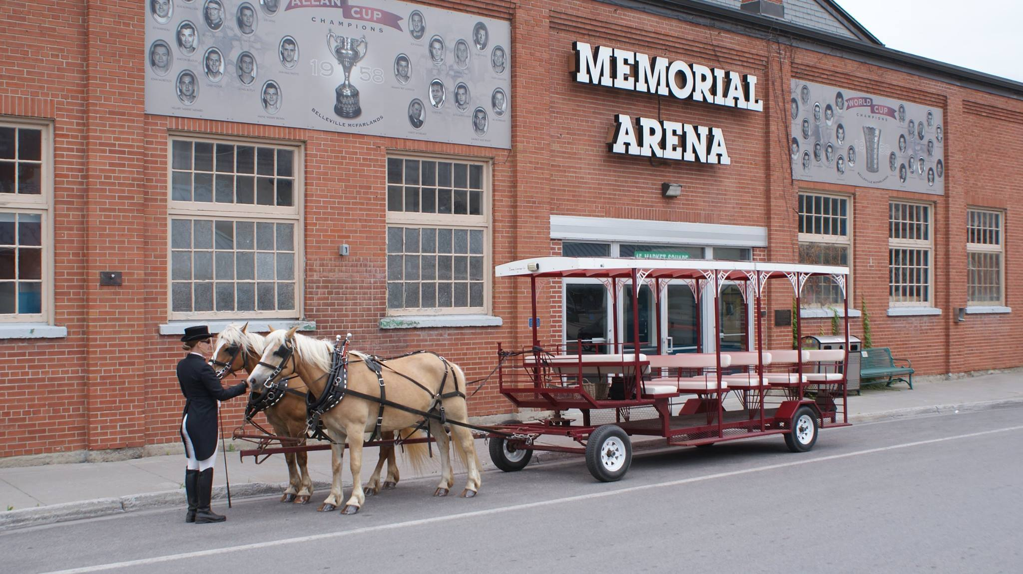 horses pulling a carriage for tours in Belleville