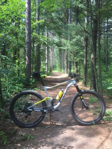 Doug's bikes - bicycle in the woods