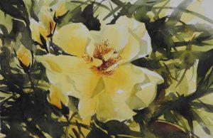 Hi Sook Barker Floral Painting