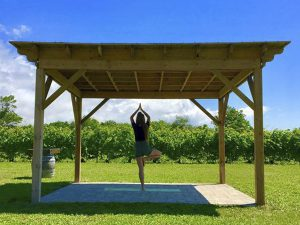 Yoga with the Winemaker