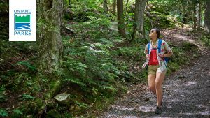 Woman hiking through woods