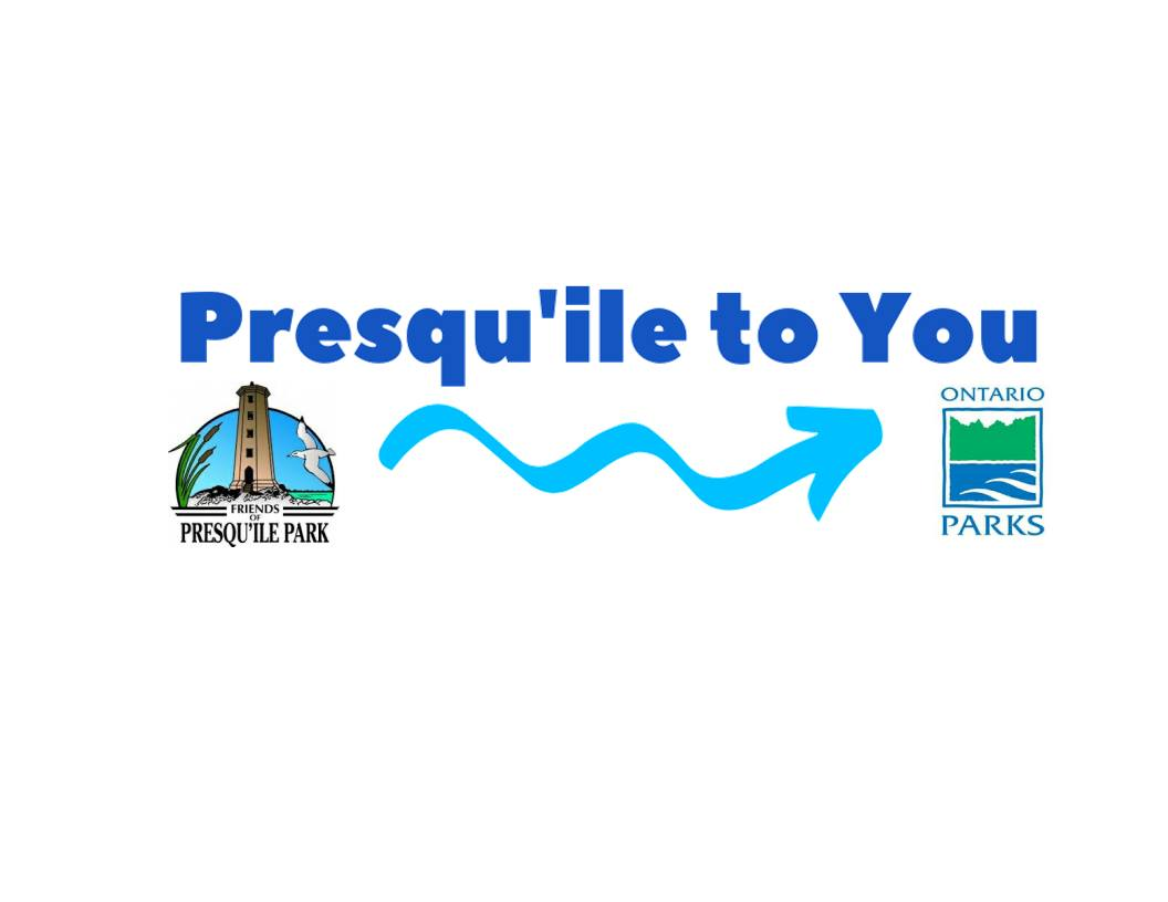 Presqu'ile to You Hero Image