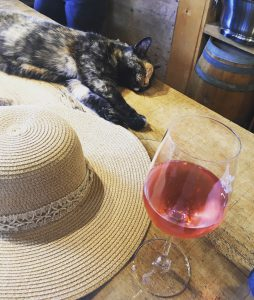 Cat sleeping, sunhat, and glass on wine on a table