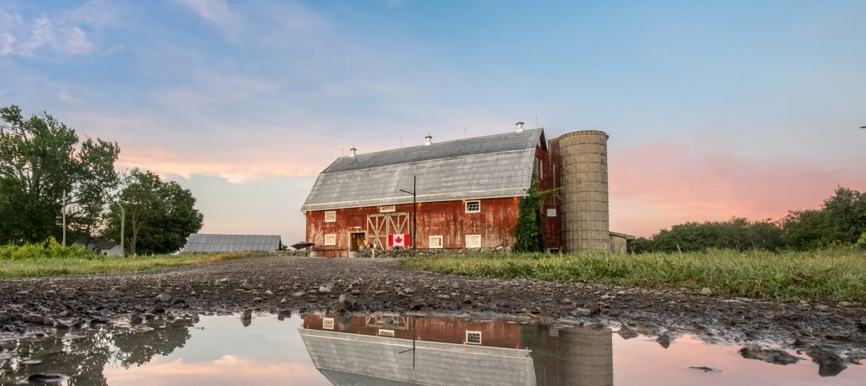 A large, red barn reflecting in the water at Karlo Estates Winery in Prince Edward County.