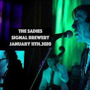 the sadies signal brewing co