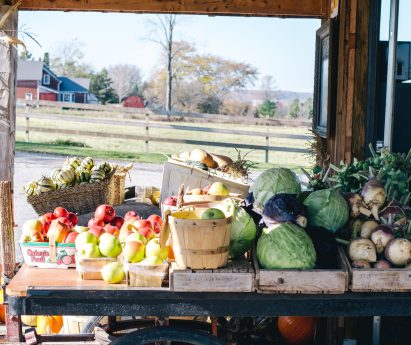 Seasonal produce lined up at a farm stand.