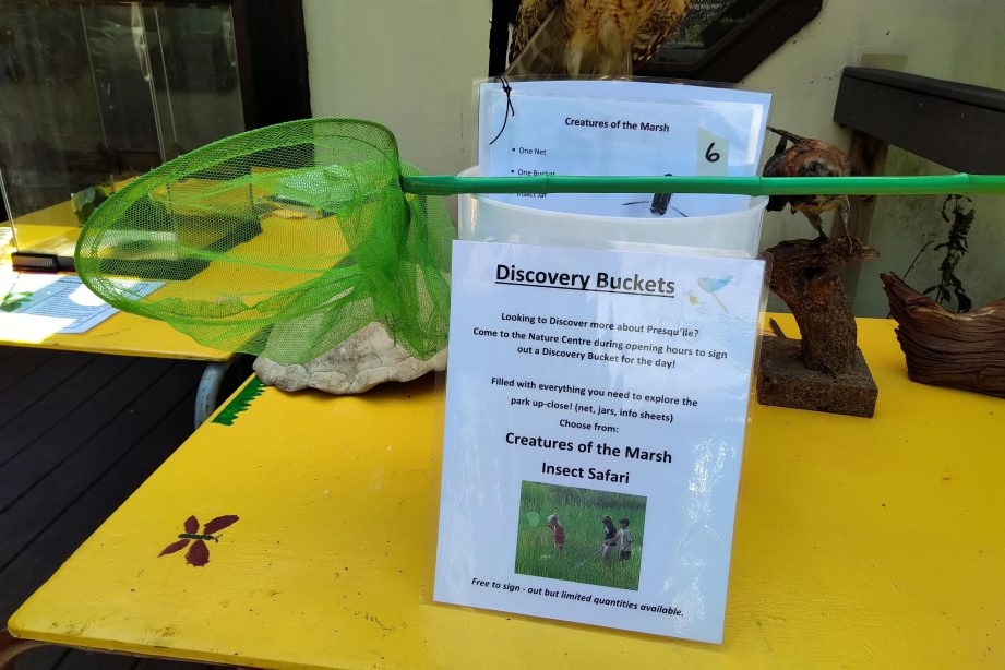 A green net and activity sheets on a yellow table.