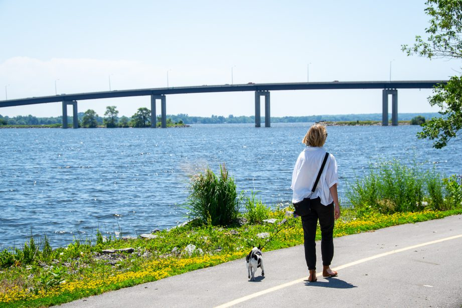 A person walking their dog along a path with a body of water and bridge in the background.