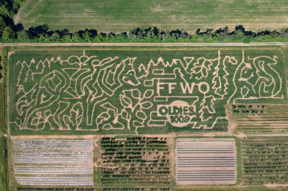 An aerial shot of a corn maze. Exploring a corn maze is one of many awesome activities to do with your kids this fall in the Bay of Quinte!