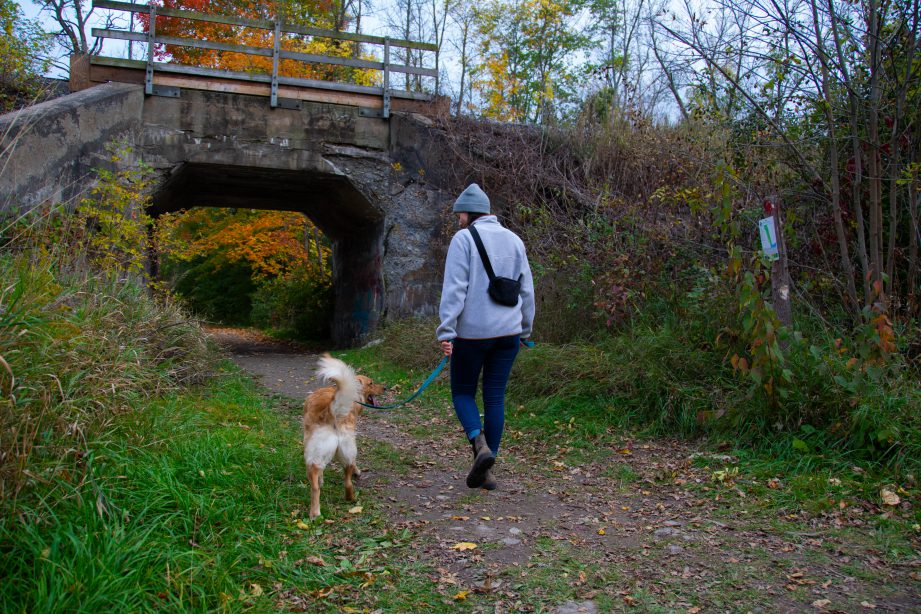 A person walking their dog along a trail. Through living and working in the Bay of Quinte region, we've learned a thing or two about all the things to do, see, eat and explore around here. Join us each week as we share must-do activities in the BoQ.