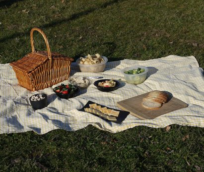 A blanket on the grass with a picnic basket and food.