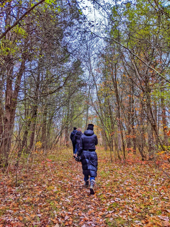 People walking in the woods.