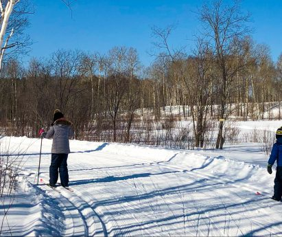 Two people cross-country skiing on a wide snowy trail.