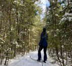 A person cross-country skiing down a forest trail.