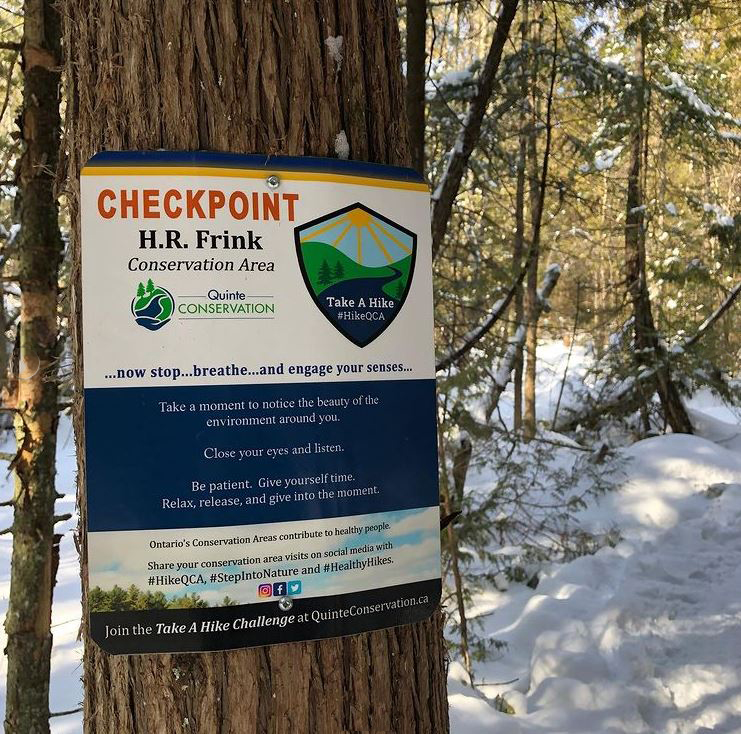 A posted sign on a tree with text: Checkpoint, HR Frink.